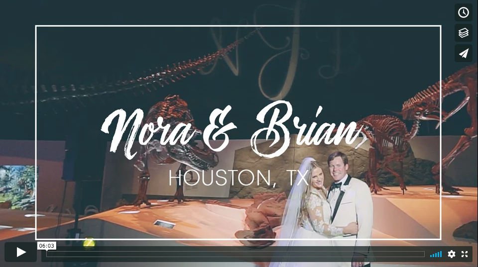 houston museum of natural science wedding highlights